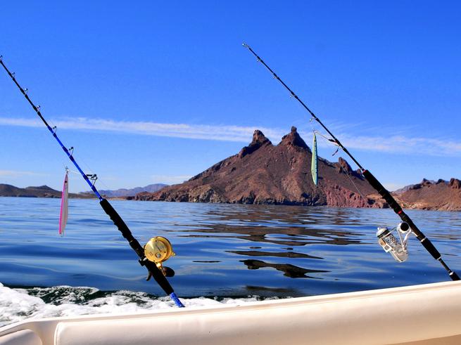 San carlos fishing fishing report december 03 2013 for San carlos mexico fishing