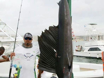 New all tackle and 30 lbs world record, Atlantic sailfish. 64,6 kg, Marco Couto, Tubarões fishing team.