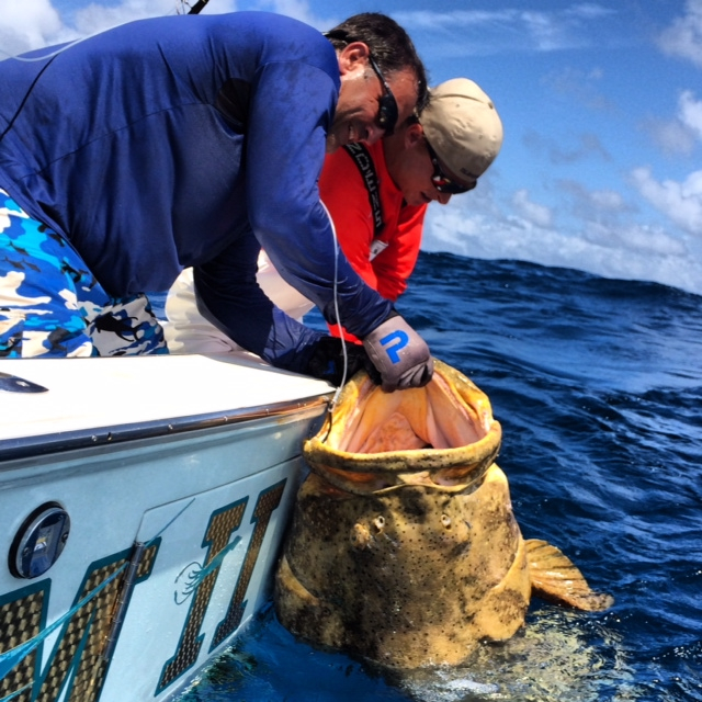 Florida keys offshore update fishing report april 20 for Middle keys fishing report