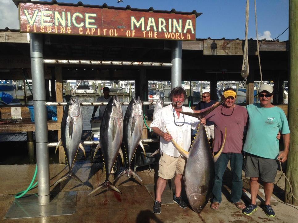 Big venice yellowfin fishing report may 20 2014 for Venice fishing report