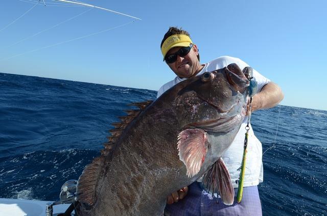 deep drop bass grouper dating