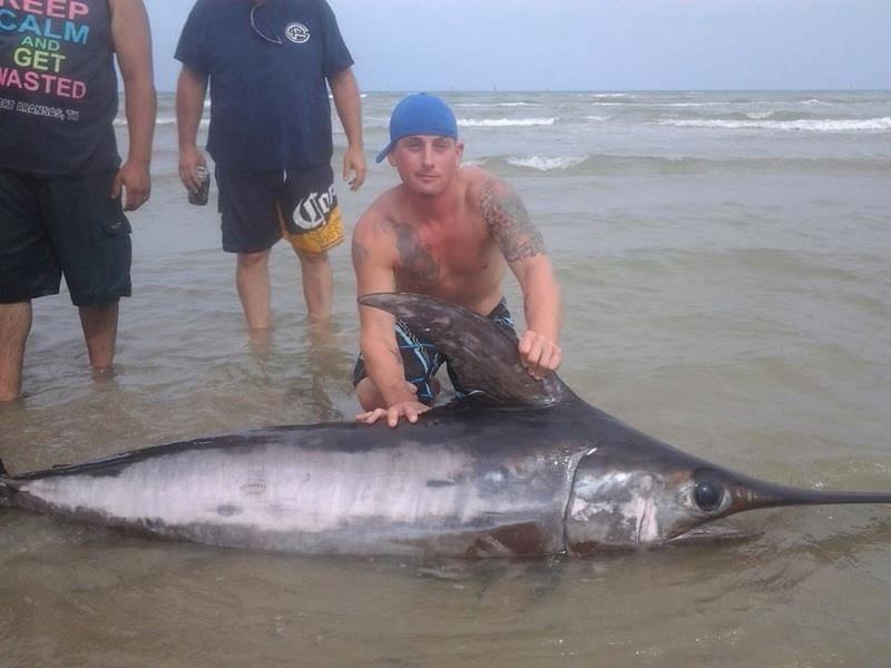 Surf swordfish fishing report august 04 2014 for Dana point fish report