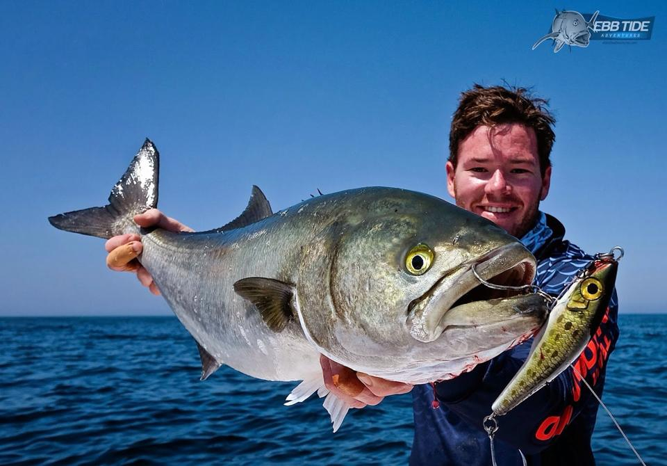 Season 39 s on in oman fishing report october 10 2014 for What fish are in season