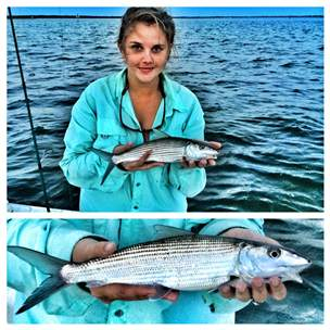 Sebastian inlet bonefish fishing report october 24 for Sebastian fishing report