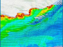 MODIS Chlorophyll image of Port Elizabeth, South Africa.
