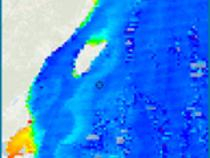 MODIS Chlorophyll image off Isla Mujeres, Mexico.