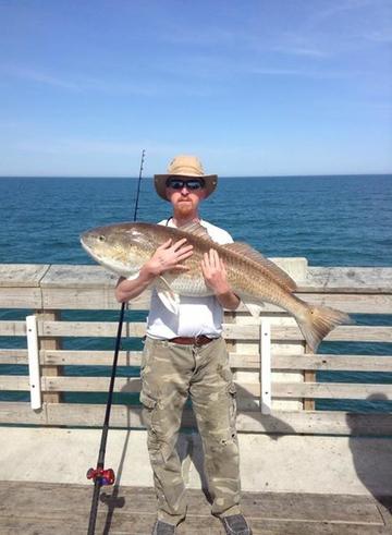 Jennette 39 s pier fishing report april 13 2015 for Jennette s fishing pier