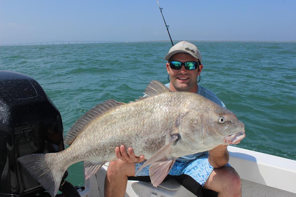 Virginia drum are biting fishing report may 11 2015 for Fishing report va