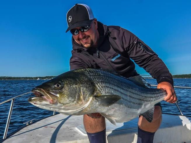 Striped bass migration fishing report june 08 2015 for Striped bass fishing reports