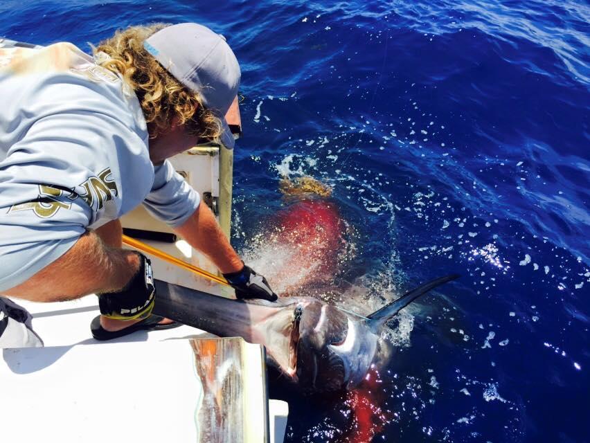 Big florida keys sword fishing report july 27 2015 for Middle keys fishing report