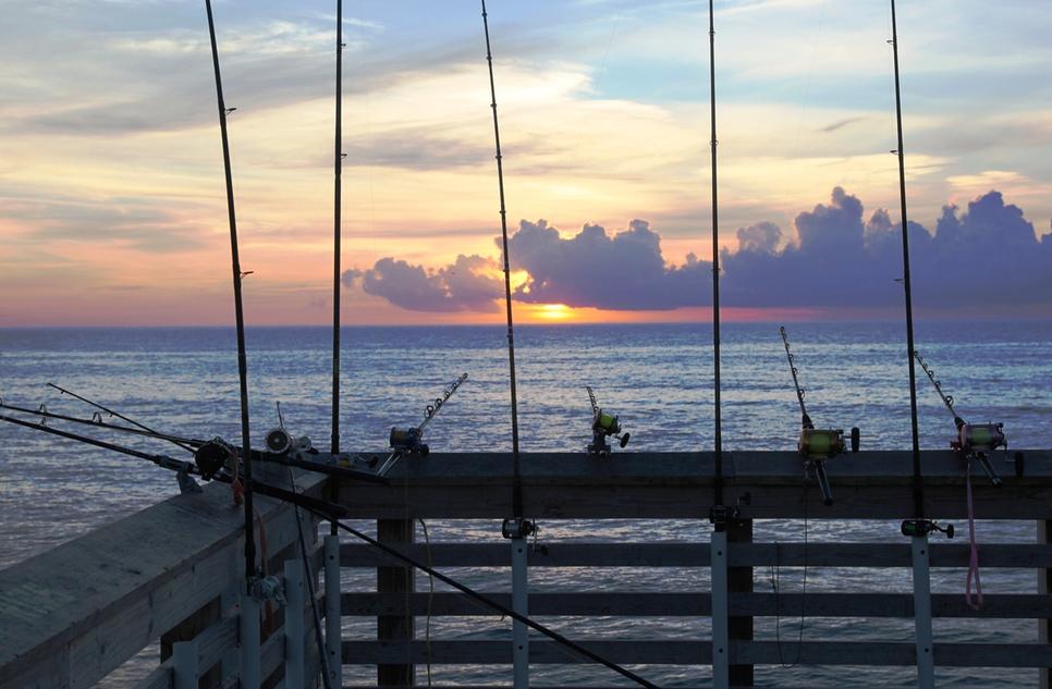 Jennette 39 s pier fishing report july 21 2015 fishtrack com for Jennette s fishing pier