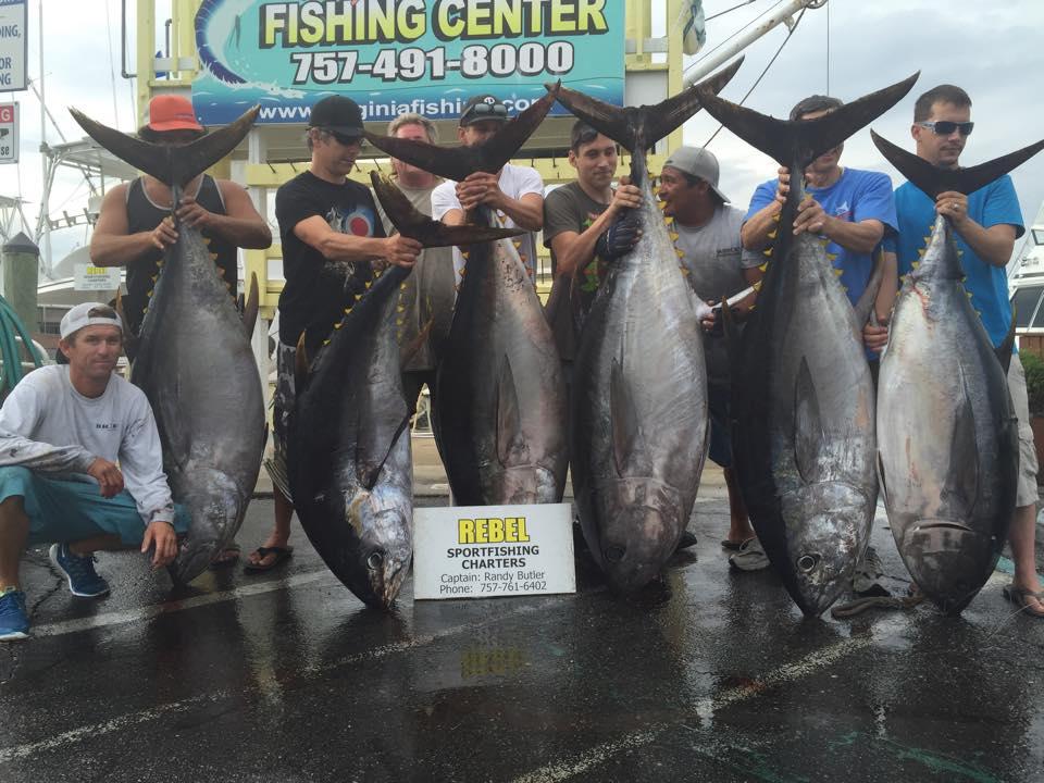 Virginia beach big eye fishing report august 30 2015 for Va beach fishing report