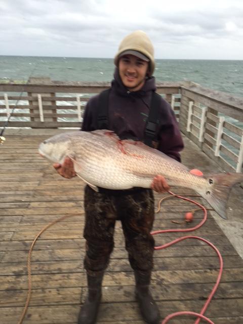 Jennette 39 s pier fishing report october 26 2015 for Jennette s pier fishing report