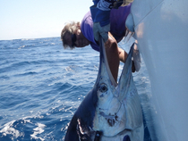 First marlin for Mark