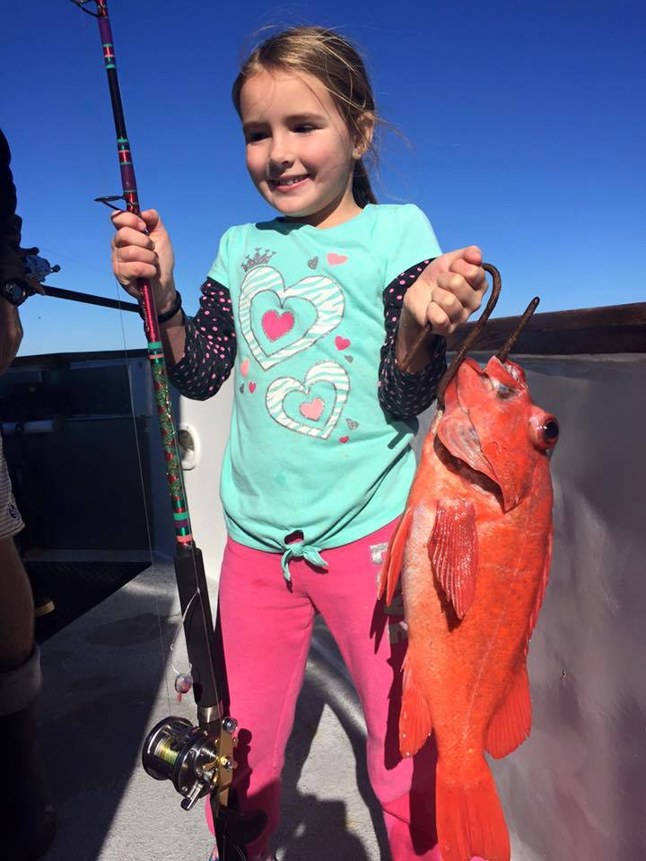New years eve fish count for channel islands sportfishing for Cisco s sportfishing fish count
