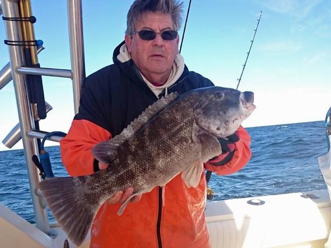 Big virginia beach tog fishing report january 04 2016 for Va beach fishing report