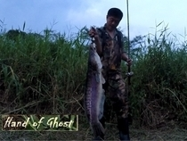 Ong Boon Swee Alvin  ,Toman , Hand of Ghost , Giant Snakehead
