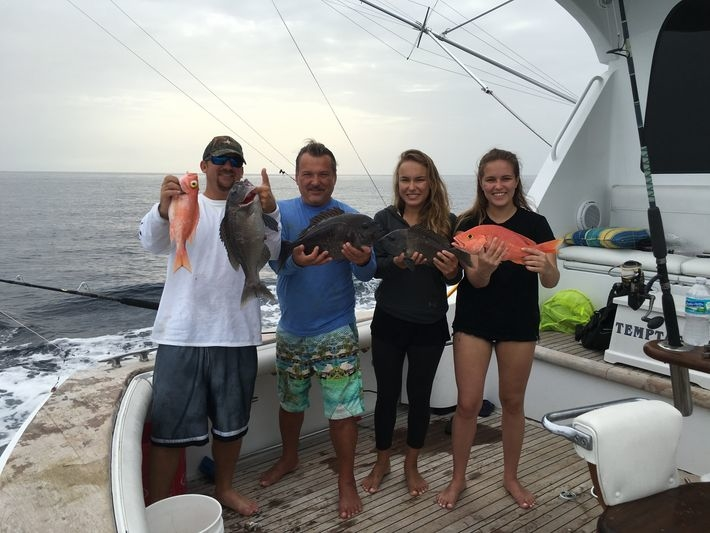 Fast and reliable deep sea fishing in miami beach florida for Miami beach fishing charters