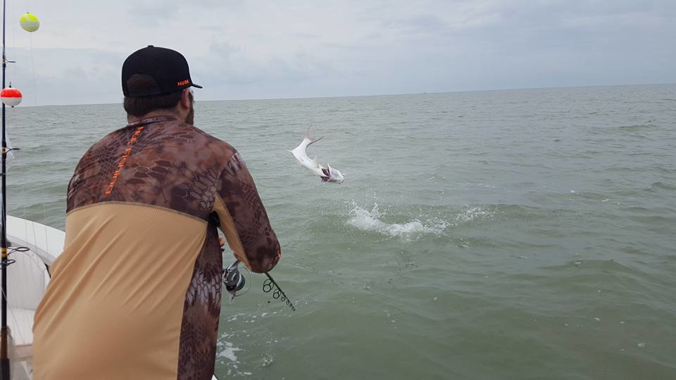 Florida keys tarpon fishing report april 03 2017 for Florida keys fishing report
