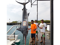 Kona's first black marlin of 2017, this 357-pounder was caught by Todd Nakatani while fishing on the private boat Breezin with Keola Toriano.  Photo courtesy of the Charter Desk.