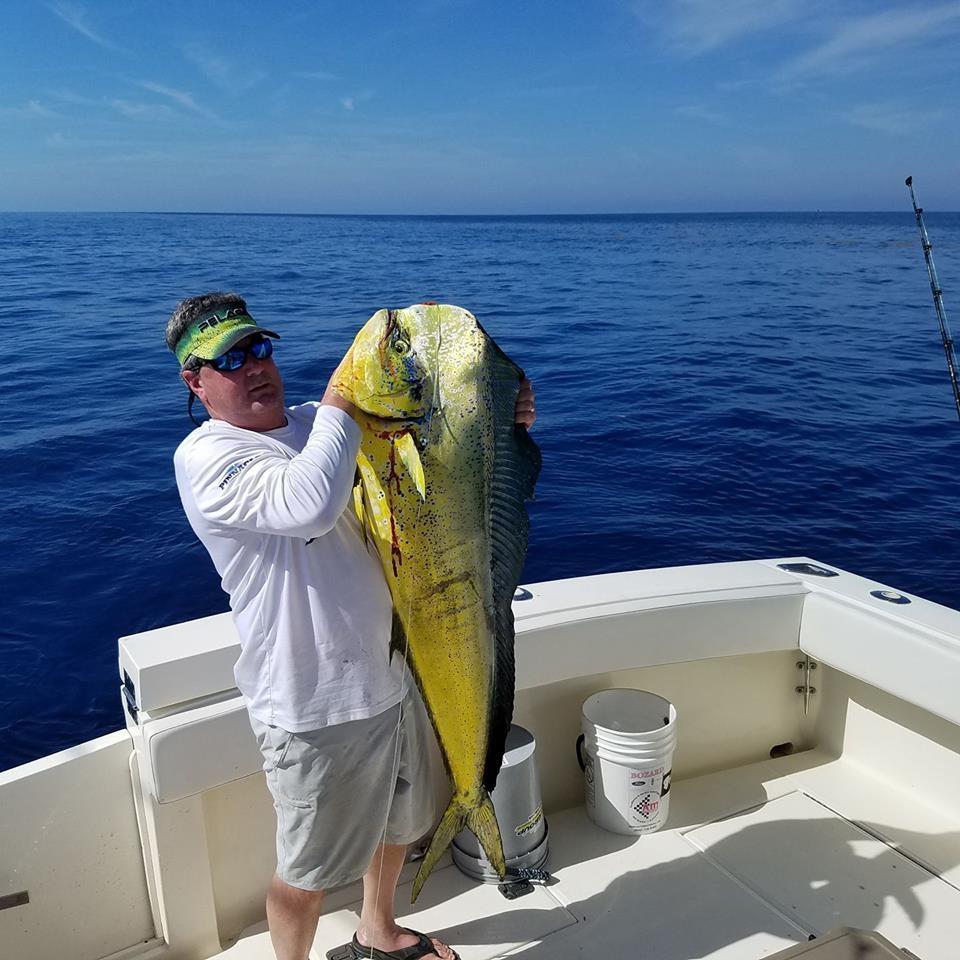 Mahi mahi off jacksonville fl fishing report april 02 for Fishing report jacksonville fl