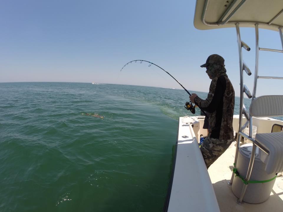 Cobes off virginia fishing report may 18 2017 for Va fishing report