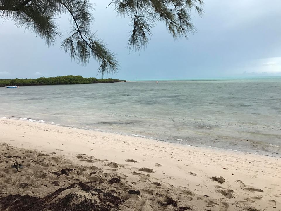 Turks and caicos fishing fishing report july 14 2017 for Turks and caicos fishing