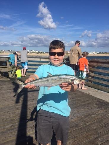 Jennette 39 s pier fishing report august 17 2017 for Jennette s pier fishing report