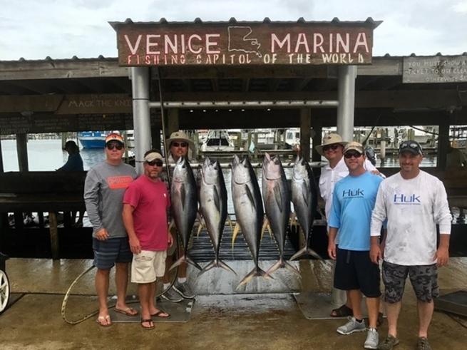 Solid venice yft bite fishing report august 23 2017 for Venice fishing report