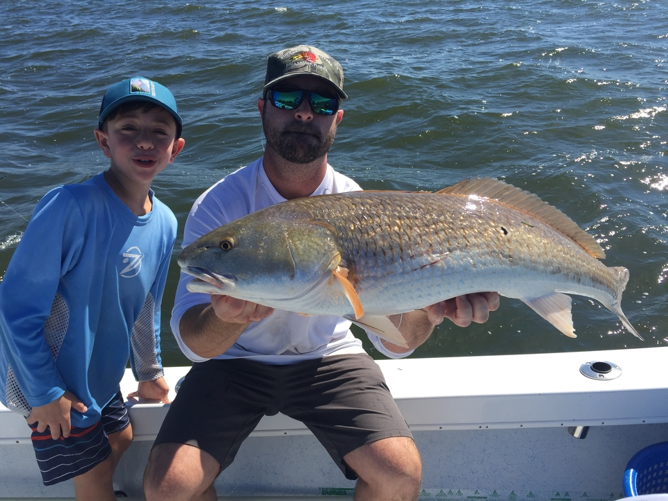 Tampa august fishing report august 01 2017 fishtrack com for Tampa bay fishing reports