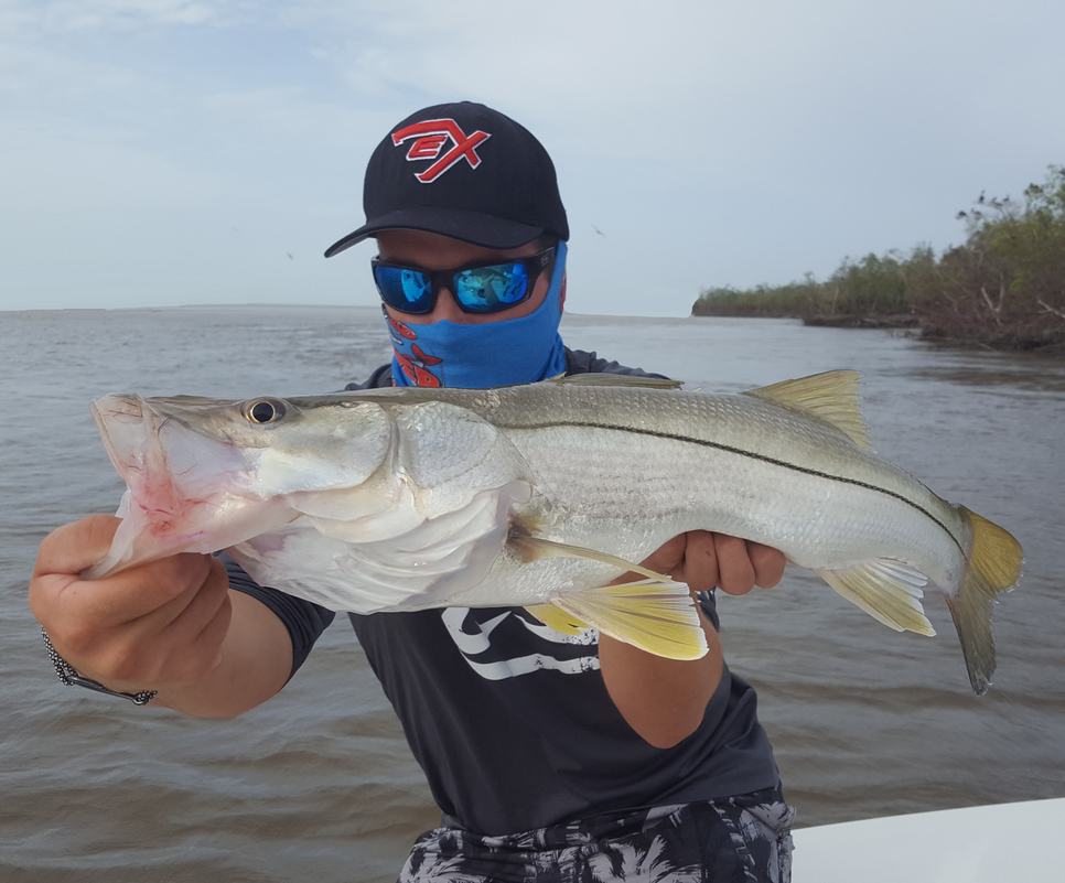 Florida keys back country report fishing report october for Seven b s fishing report