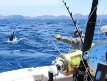 deep sea fishing durban