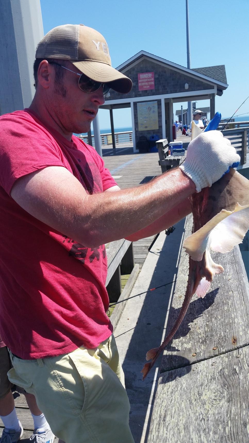 Jennette 39 s pier fishing report may 04 2018 fishtrack com for Jennette s pier fishing report